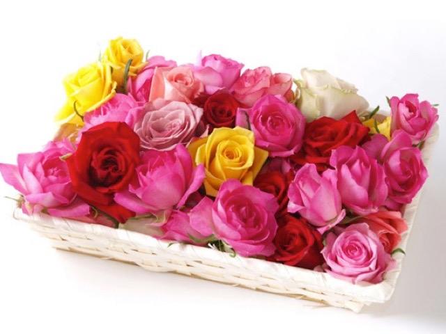 ベルローゼス公式HPから引用したバラ風呂用のバラの画像