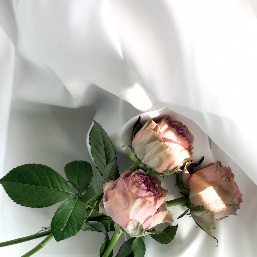 バラ風呂に使ったサーモンピンク色のバラの写真