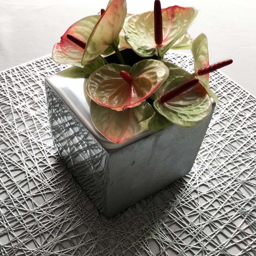 スクエア型の花瓶を使って私が作ったアンスリウムのアレンジメントを撮影した写真