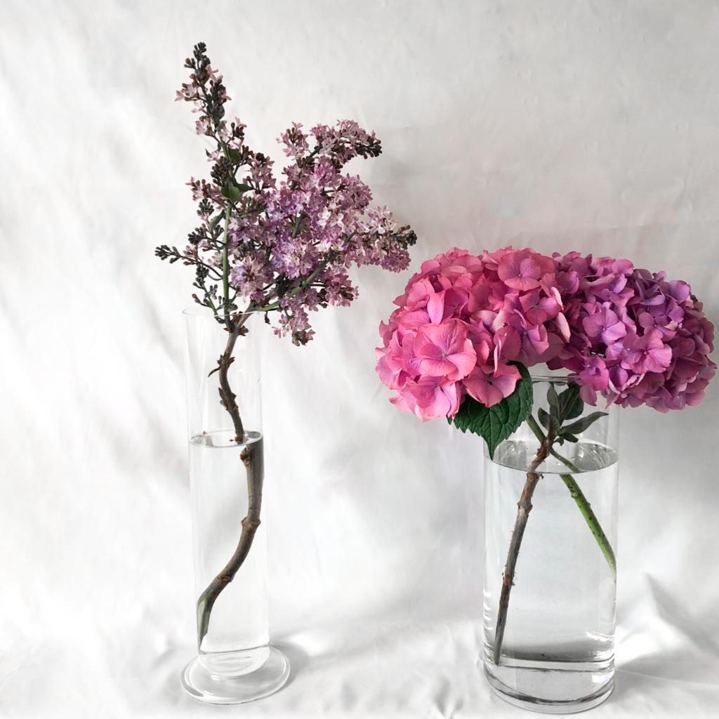 シリンダータイプの花瓶を使って私が作ったライラックとアジサイのアレンジメントを撮影した写真