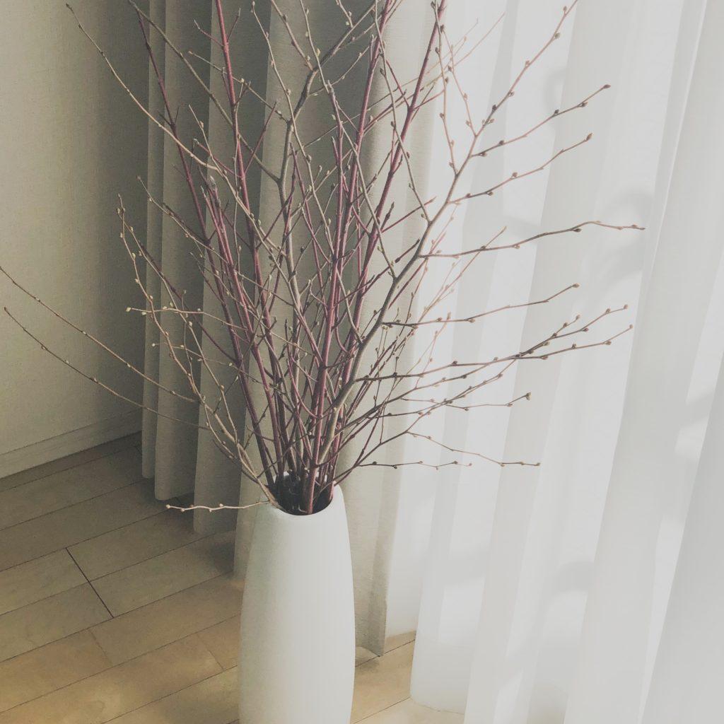 ニトリのフラワーベースWEトールを使って私が作った枝もののアレンジメントを撮影した写真