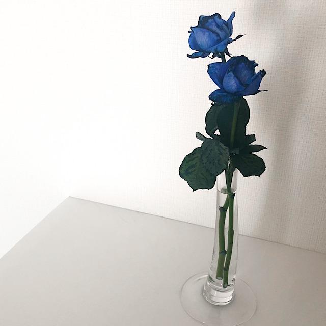 花びらアートに使った青いバラを私が撮影した写真