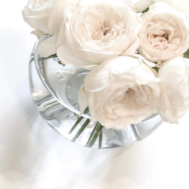 花びらアートに使った白いバラを私が撮影した写真