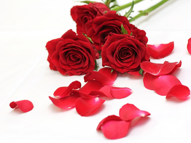 言葉 花 薔薇 の