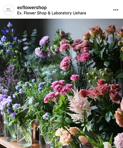 ex.flower shop & laboratory(イクスフラワーショップラボラトリー)公式インスタグラムから引用した花の画像