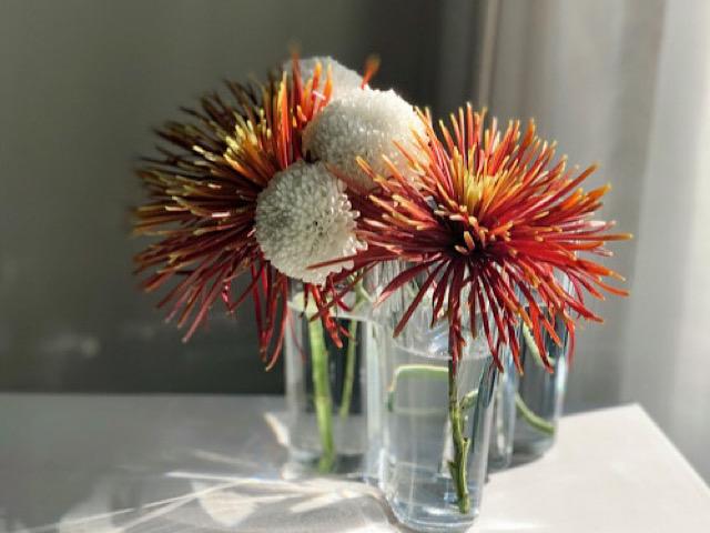 おすすめのiittalaの花瓶を撮影した画像