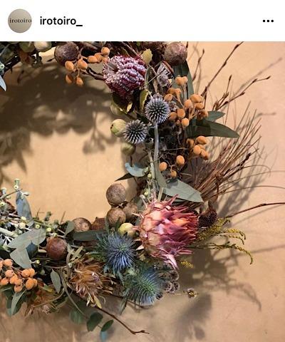 irotoiro(イロトイロ)公式インスタグラムから引用した花の画像