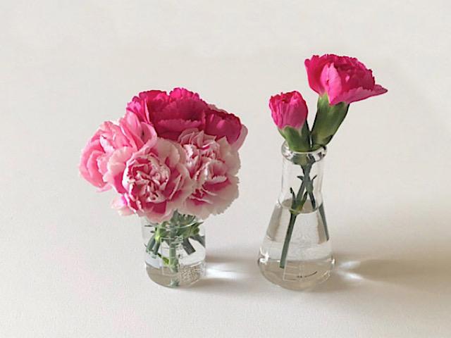 花びらアートに使ったスプレーカーネーションを撮影した画像