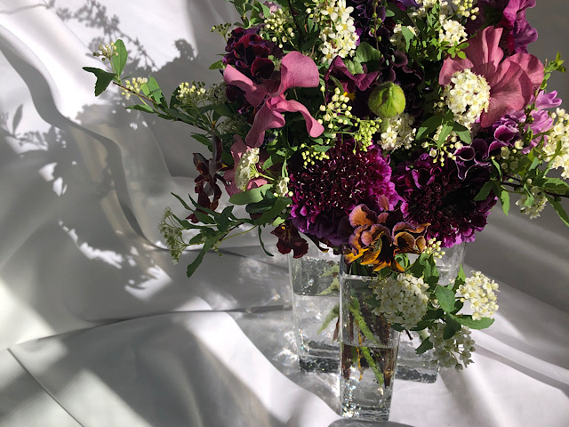 切り花を自宅で撮影した画像