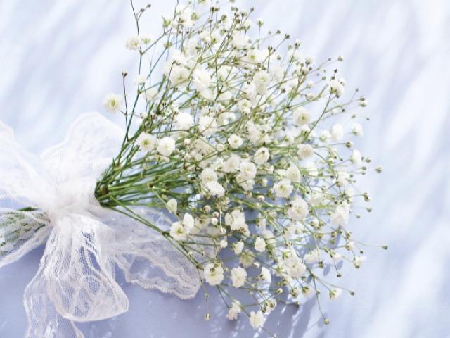 カスミソウの花束の画像