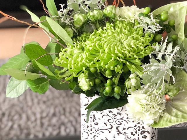 菊のアナスタシアグリーンを使ったアレンジメントを撮影した画像