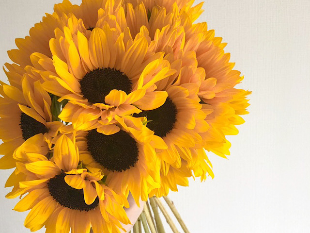 8月におすすめの切り花ヒマワリの画像