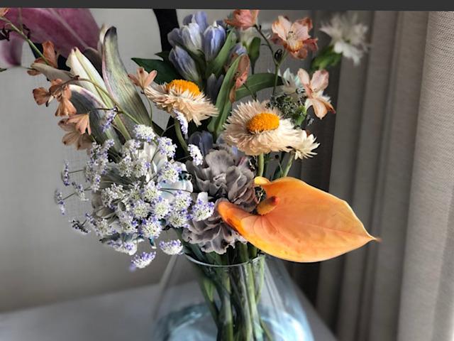 8月におすすめの切り花アンスリウムの画像